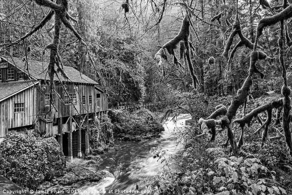 The Cedar Creek Grist Mill in Washington State. Acrylic by Jamie Pham