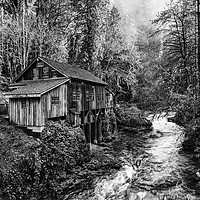 Buy canvas prints of The Cedar Creek Grist Mill in Washington State. by Jamie Pham