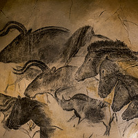 Buy canvas prints of Chauvet Cave by Philippe Clement