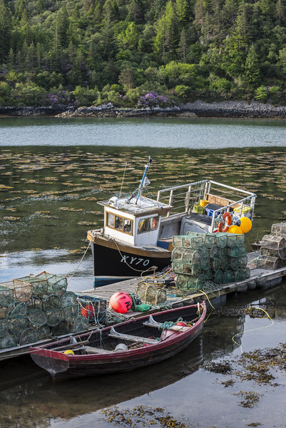 Fishing Boat in Plockton, Scotland Print by Arterra