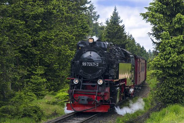 Steam Train Neubaulokomotive in the Harz National Park Framed Print by Arterra