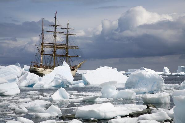 Tallship Europa in Antarctica Framed Print by Arterra