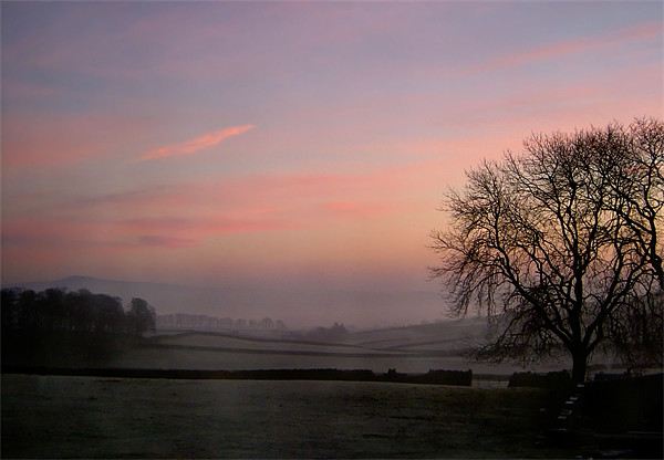 Misty,Dawn, Yorkshire Canvas print by Jim Round