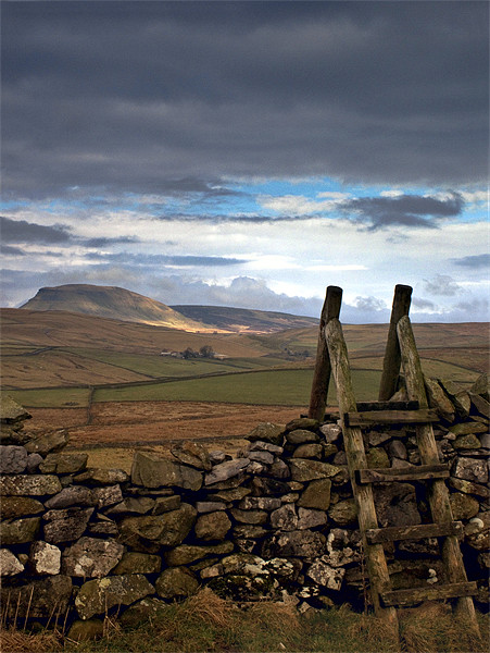 Pen-y-Ghent, Yorkshire Dales Canvas print by Jim Round