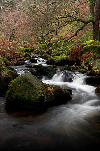 Waterfall Gill, Yorkshire Dales Canvas print by Jim Round