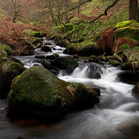 Buy canvas prints of Waterfall Gill, Yorkshire Dales by Jim Round