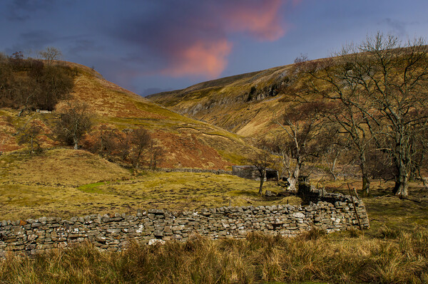 Swaledale Canvas Print by Stephen Smith