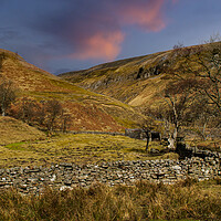 Buy canvas prints of Swaledale by Stephen Smith