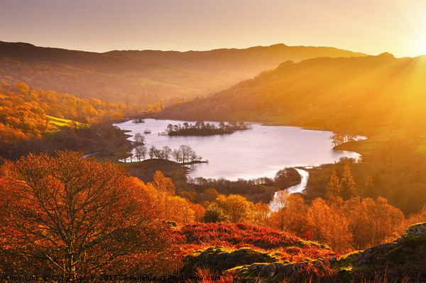 Rydal Water at sunrise Canvas print by Chris Harris