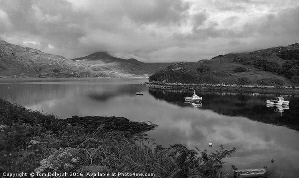Loch Glendhu fishing boats Canvas print by Tom Dolezal