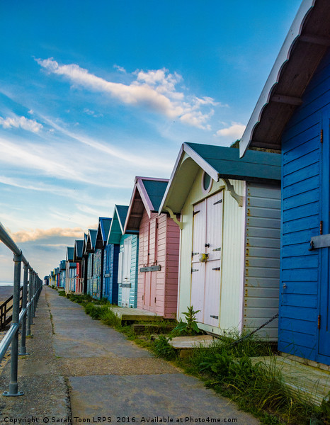 Cromer Huts Canvas print by Sarah Toon LRPS