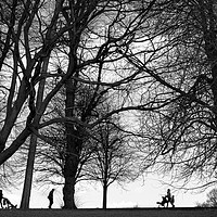 Buy canvas prints of Walking in the park by Peter Zabulis