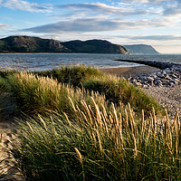 Buy canvas prints of Deganwy Dunes by Peter Zabulis