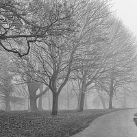 Buy canvas prints of The Empty Path by Peter Zabulis
