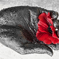 Buy canvas prints of Remembrance by Peter Zabulis