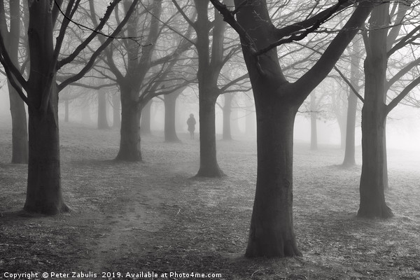 A figure in the mist Canvas print by Peter Zabulis