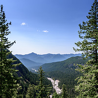 Buy canvas prints of Nisqually river bed, in summer, Mount Rainier by Gary Parker
