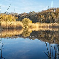 Buy canvas prints of Clockburn Lake Reflections by Rob Cole