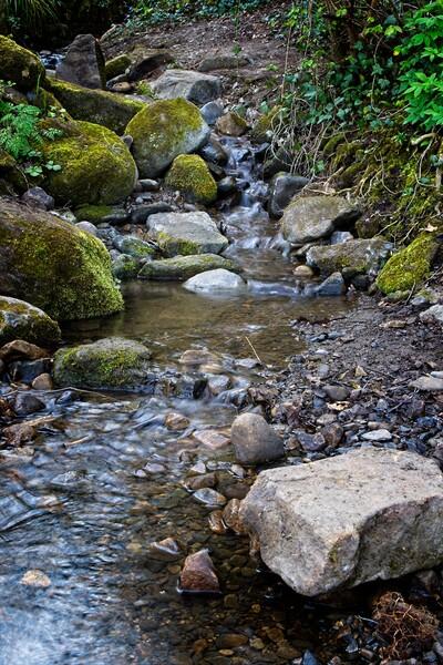 Derwent Valley Stream Framed Print by Rob Cole