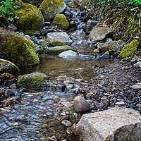 Buy canvas prints of Derwent Valley Stream by Rob Cole