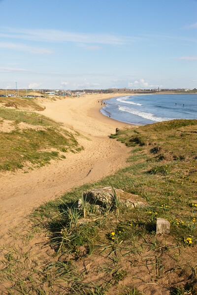 Sandhaven Beach, South Shields Framed Mounted Print by Rob Cole