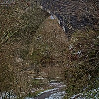 Buy canvas prints of The Causey Arch Railway Bridge by Rob Cole