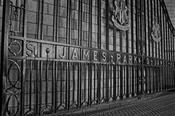St James Park, Newcastle Canvas Print by Rob Cole