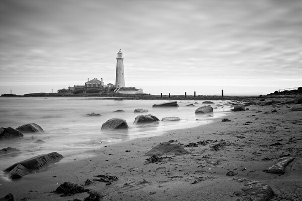 St Mary's Lighthouse, Whitley Bay Canvas Print by Rob Cole