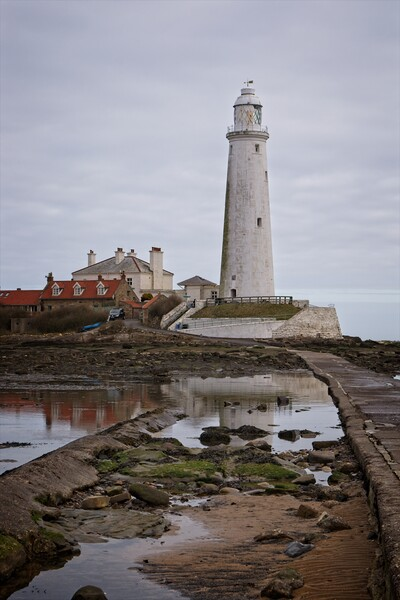 St Mary's Lighthouse, Whitley Bay Framed Mounted Print by Rob Cole