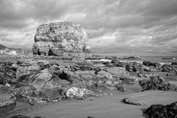 Marsden Rock, Whitburn Framed Mounted Print by Rob Cole