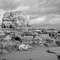 Buy canvas prints of Marsden Rock, Whitburn by Rob Cole