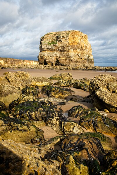 Marsden Rock, Whitburn Canvas Print by Rob Cole
