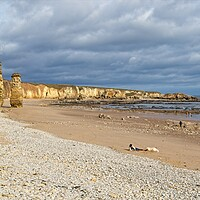 Buy canvas prints of Marsden Beach, North East Coast by Rob Cole