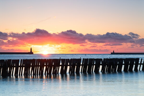 Mouth of the Tyne Sunrise Framed Mounted Print by Rob Cole