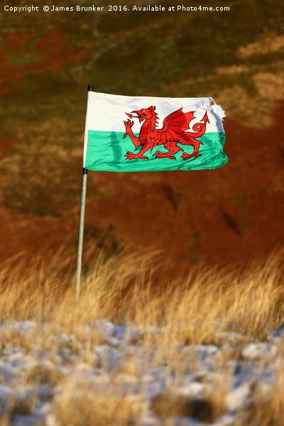 Welsh Flag and Winter Hillside Canvas print by James Brunker
