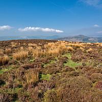 Buy canvas prints of Derbyshire Peak District by Simon Annable