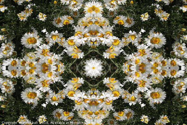 Kaleidoscope Daisies Pattern Canvas Print by steve ball