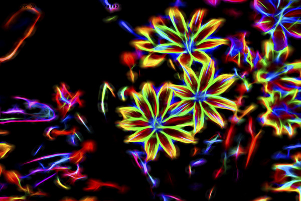 flower in spring Canvas print by Ornella Bonomini