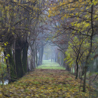 Buy canvas prints of walk in the autumn forest with mist by Ornella Bonomini