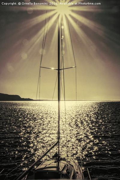 sail boat on lake Canvas print by Ornella Bonomini