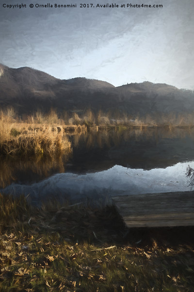 landscape lake Canvas print by Ornella Bonomini