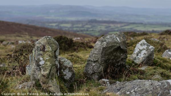 Dartmoor Stone Canvas Print by Iain Fielding