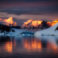 Buy canvas prints of Golden Antarctic by James Kenning