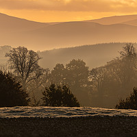 Buy canvas prints of Early Morning mist in the hills. by Dave Collins