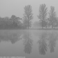 Buy canvas prints of Tree Reflections, Misty Morning by Dave Collins