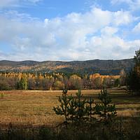 Buy canvas prints of Autumn landscape by Larisa Siverina