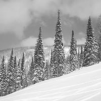 Buy canvas prints of Winter landscape. by Larisa Siverina