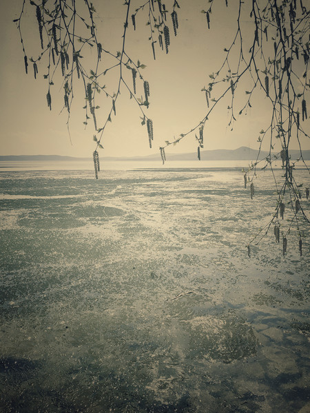 Spring landscape with ice drift on the lake.   Canvas print by Larisa Siverina