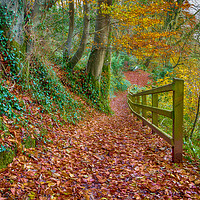 Buy canvas prints of Dylan's Birthday Walk, Laugharne. by Colin Allen