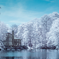 Buy canvas prints of Knaresborough Infrared scene by mike morley